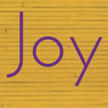 JOYCICLE